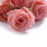Luxurious bouquet of roses 02_5696TЕ8576